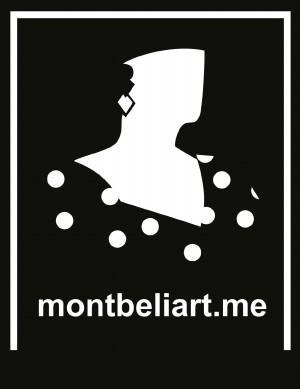 Montbeliart projet rhizome du Master 1 Produits et Services Multimédia